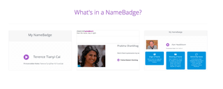 NameBadge: Let the World Really Know Your Name